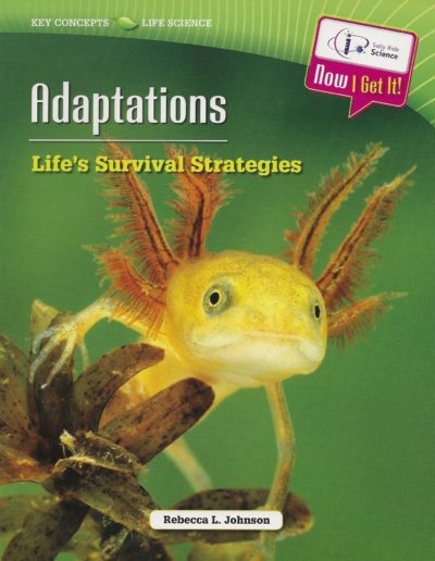 SRS Adaptations